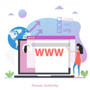 Concept of domain authority